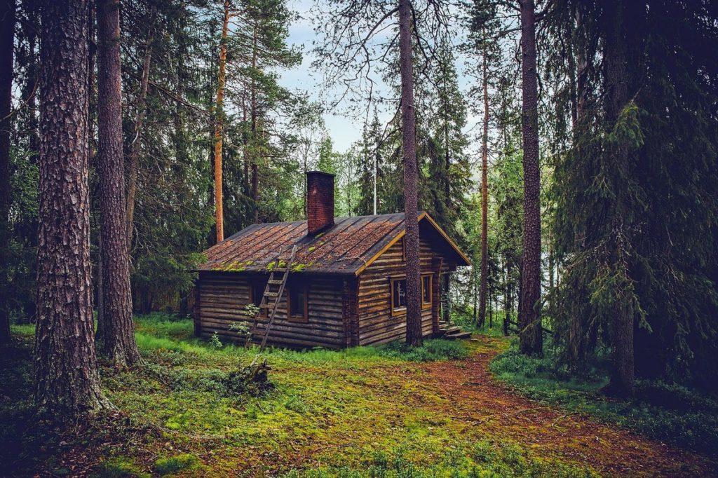petite maison bois forêt